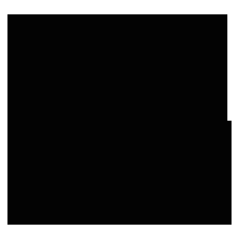 Montis Nordic AS